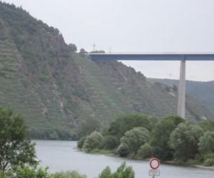 bridgevines